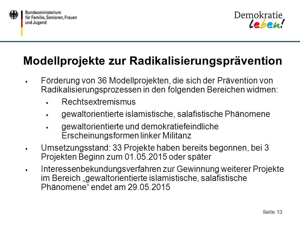 Seite 13 Modellprojekte zur Radikalisierungsprävention  Förderung von 36 Modellprojekten, die sich der Prävention von Radikalisierungsprozessen in de