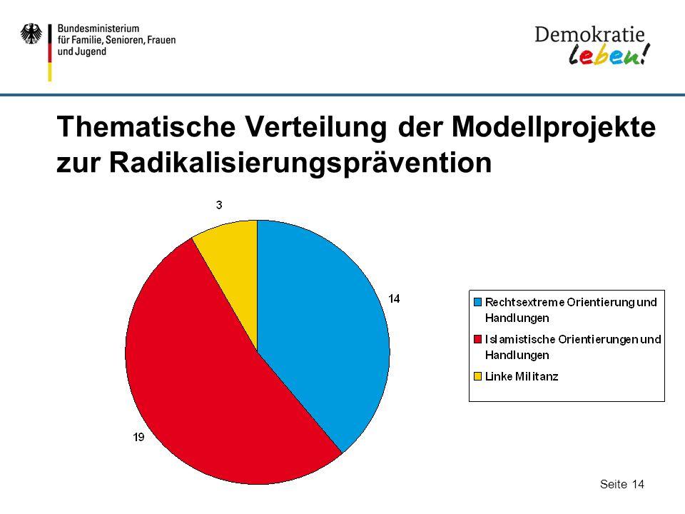 Seite 14 Thematische Verteilung der Modellprojekte zur Radikalisierungsprävention