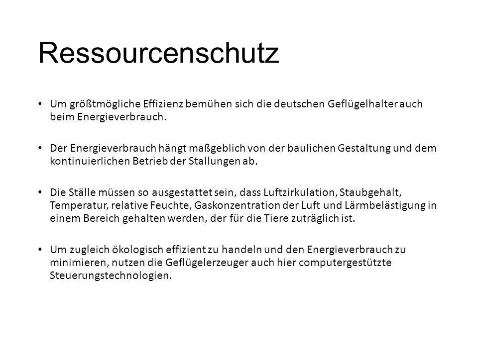 Ressourcenschutz Um größtmögliche Effizienz bemühen sich die deutschen Geflügelhalter auch beim Energieverbrauch. Der Energieverbrauch hängt maßgeblic