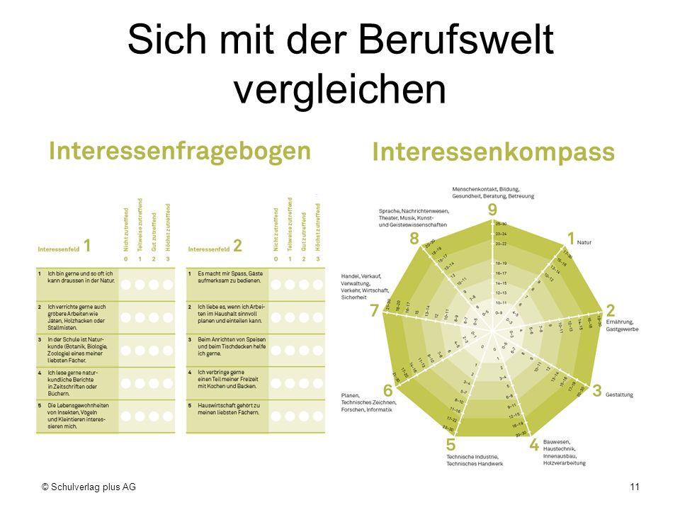 Sich mit der Berufswelt vergleichen © Schulverlag plus AG11