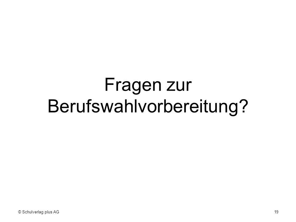 Fragen zur Berufswahlvorbereitung? 19© Schulverlag plus AG