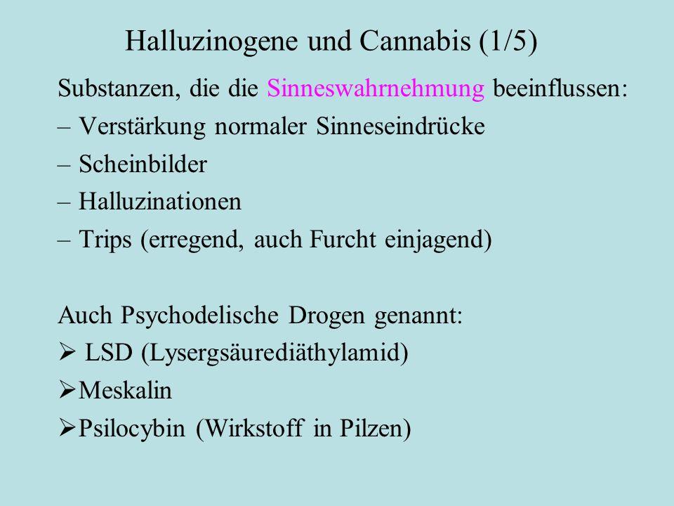 Halluzinogene und Cannabis (1/5) Substanzen, die die Sinneswahrnehmung beeinflussen: –Verstärkung normaler Sinneseindrücke –Scheinbilder –Halluzinatio