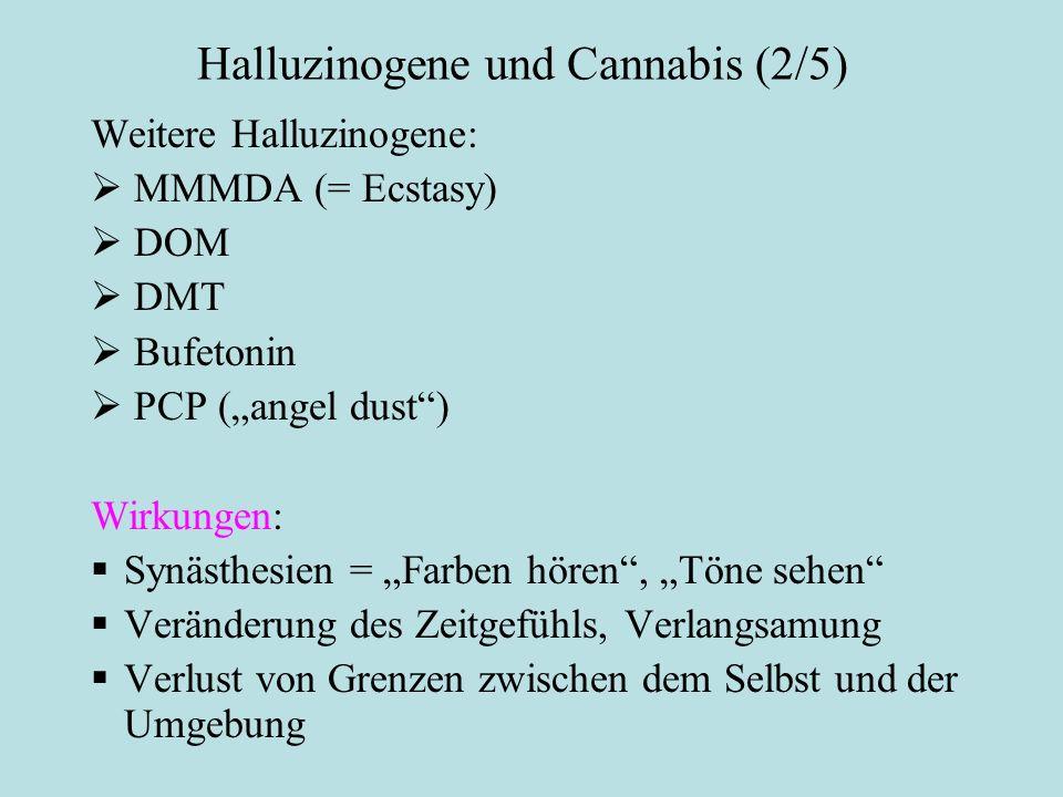 """Halluzinogene und Cannabis (2/5) Weitere Halluzinogene:  MMMDA (= Ecstasy)  DOM  DMT  Bufetonin  PCP (""""angel dust"""") Wirkungen:Allgemeine Wirkunge"""