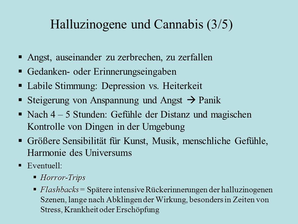 Halluzinogene und Cannabis (3/5) Wirkungen der Halluzinogene (2):  Angst, auseinander zu zerbrechen, zu zerfallen  Gedanken- oder Erinnerungseingabe