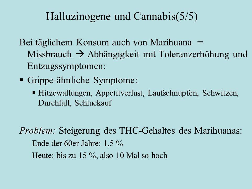Halluzinogene und Cannabis(5/5) Cannabis (2): Bei täglichem Konsum auch von Marihuana = Missbrauch  Abhängigkeit mit Toleranzerhöhung und Entzugssymp
