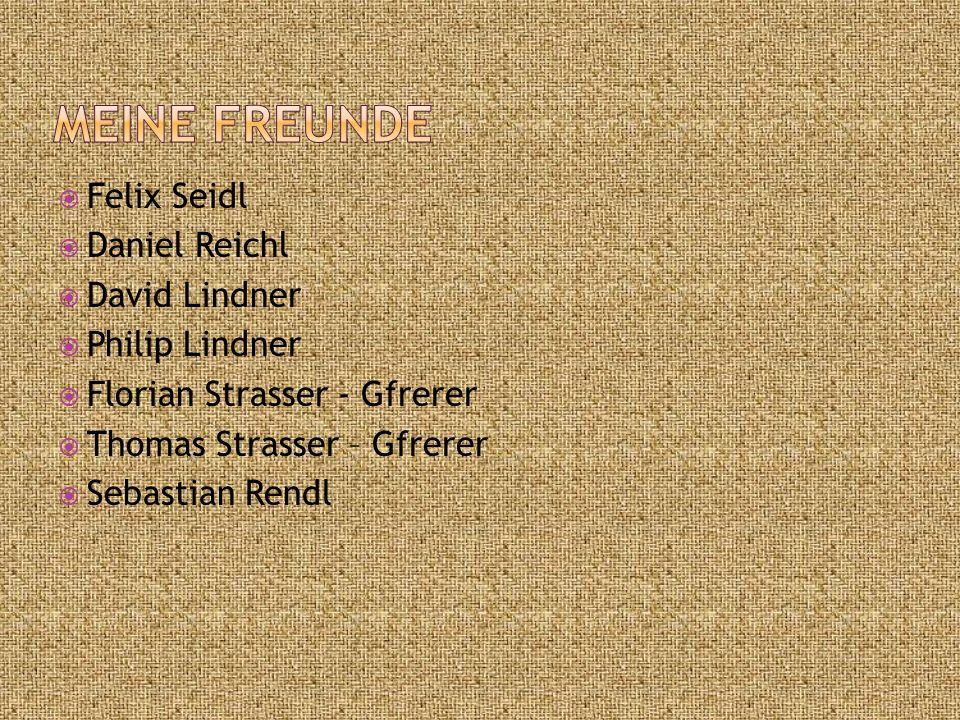  Felix Seidl  Daniel Reichl  David Lindner  Philip Lindner  Florian Strasser - Gfrerer  Thomas Strasser – Gfrerer  Sebastian Rendl