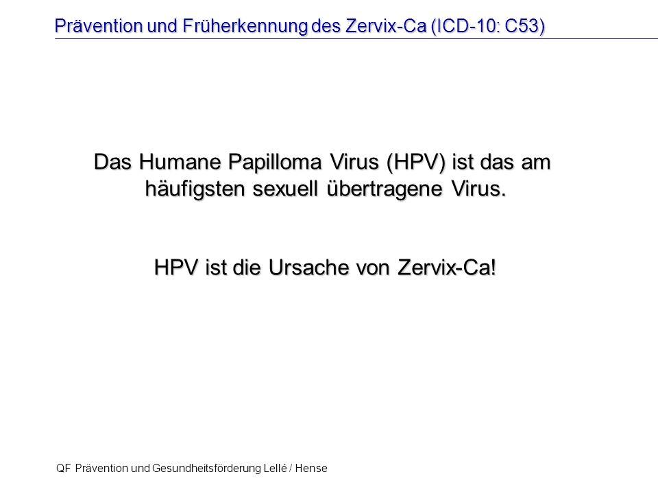 Prävention und Früherkennung des Zervix-Ca (ICD-10: C53) QF Prävention und Gesundheitsförderung Lellé / Hense 18 Das Humane Papilloma Virus (HPV) ist