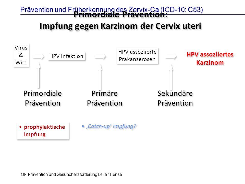 Prävention und Früherkennung des Zervix-Ca (ICD-10: C53) QF Prävention und Gesundheitsförderung Lellé / Hense 24 HPV Infektion HPV assoziierte Präkanz