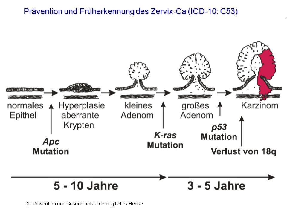 Prävention und Früherkennung des Zervix-Ca (ICD-10: C53) QF Prävention und Gesundheitsförderung Lellé / Hense 55 wiederholt Pap IIID Pap IVA Konisation HPV-Test Dünnschichtzytologie etc.