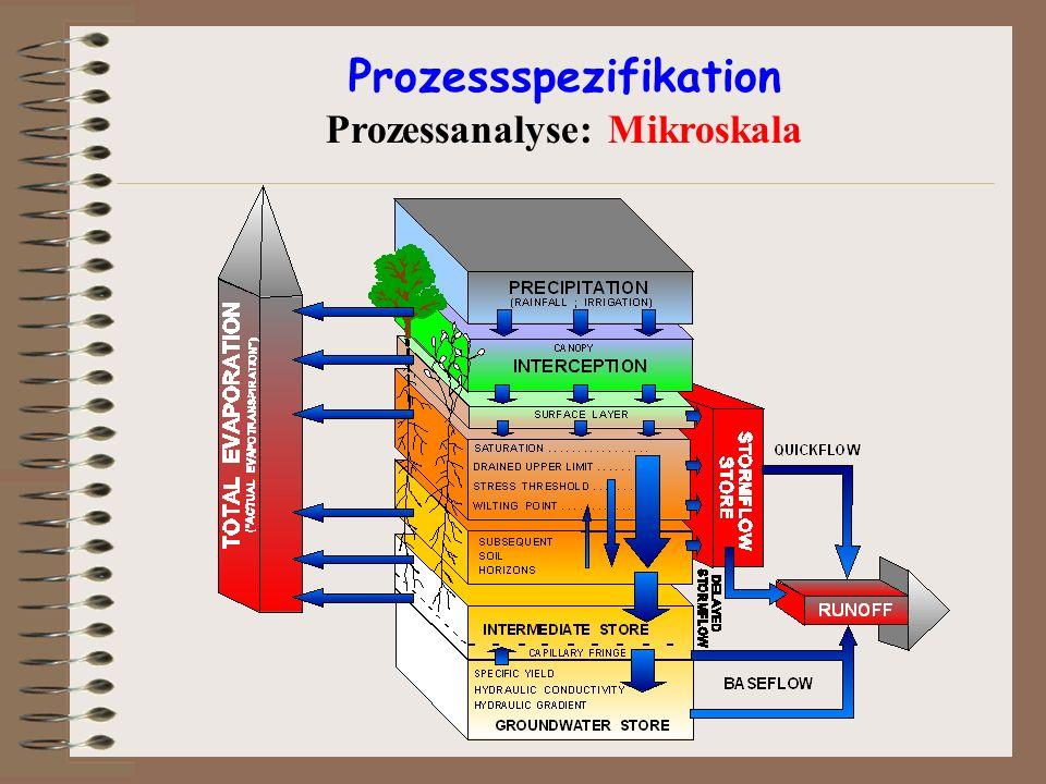 Prozessspezifikation Prozessanalyse: Mikroskala
