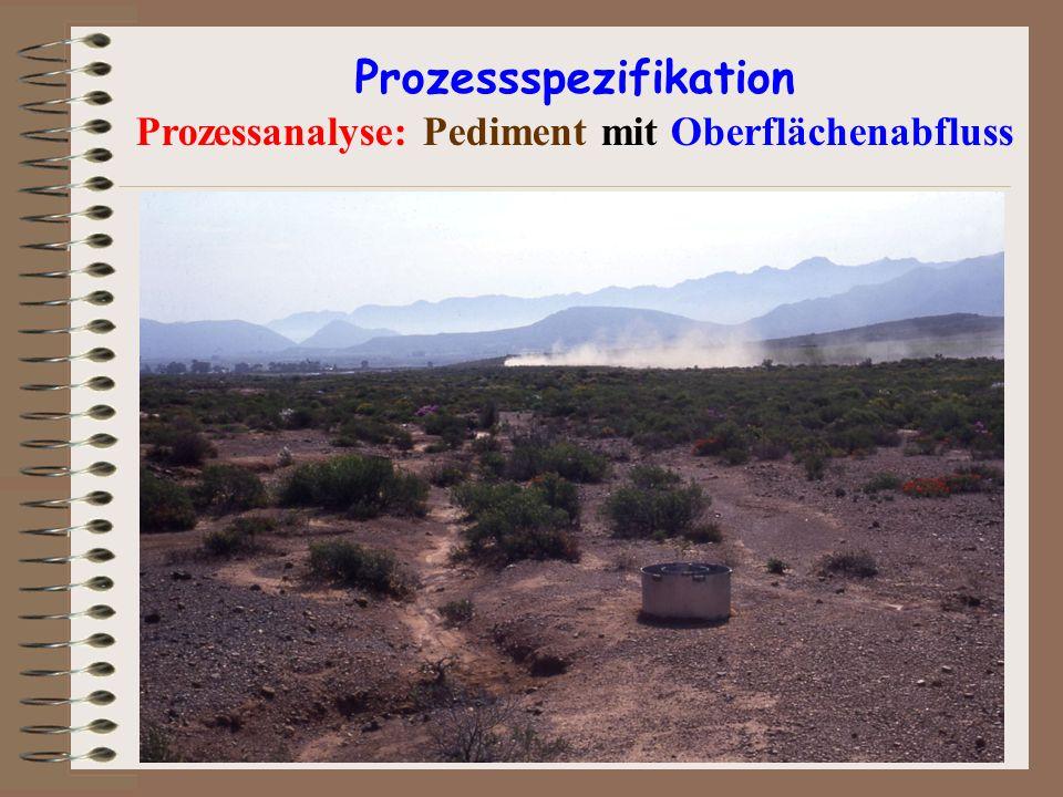 Prozessspezifikation Prozessanalyse: Pediment mit Oberflächenabfluss