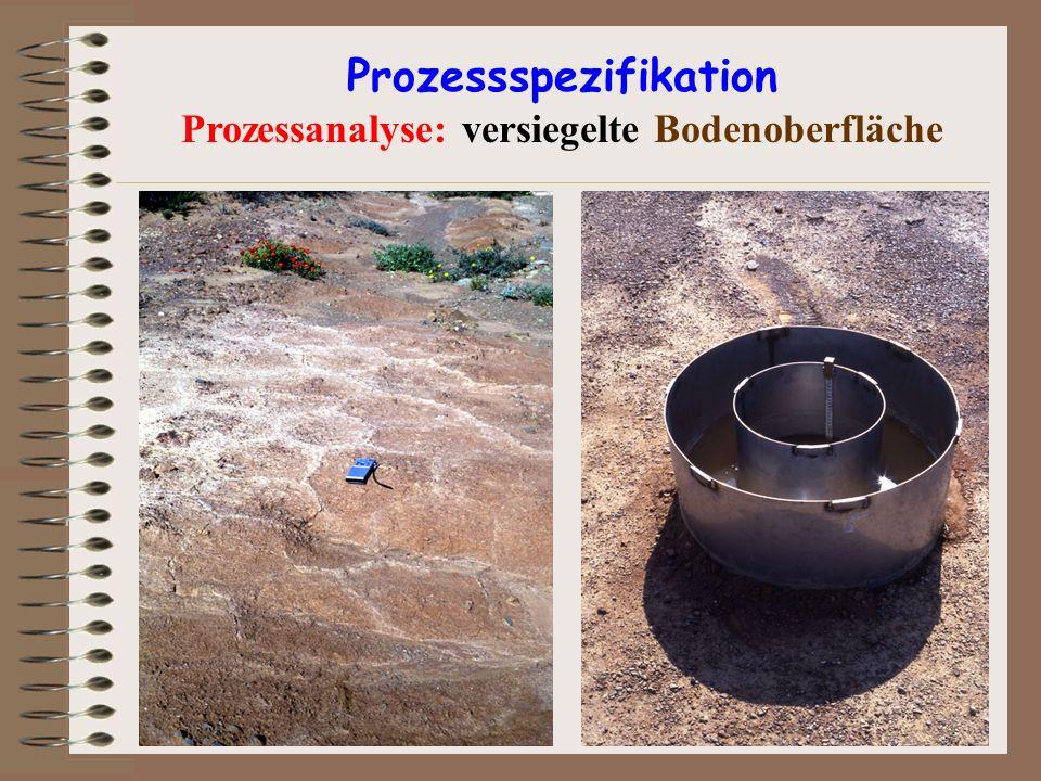 Prozessspezifikation Prozessanalyse: versiegelte Bodenoberfläche