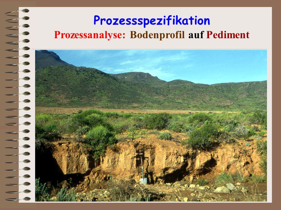 Prozessspezifikation Prozessanalyse: Bodenprofil auf Pediment