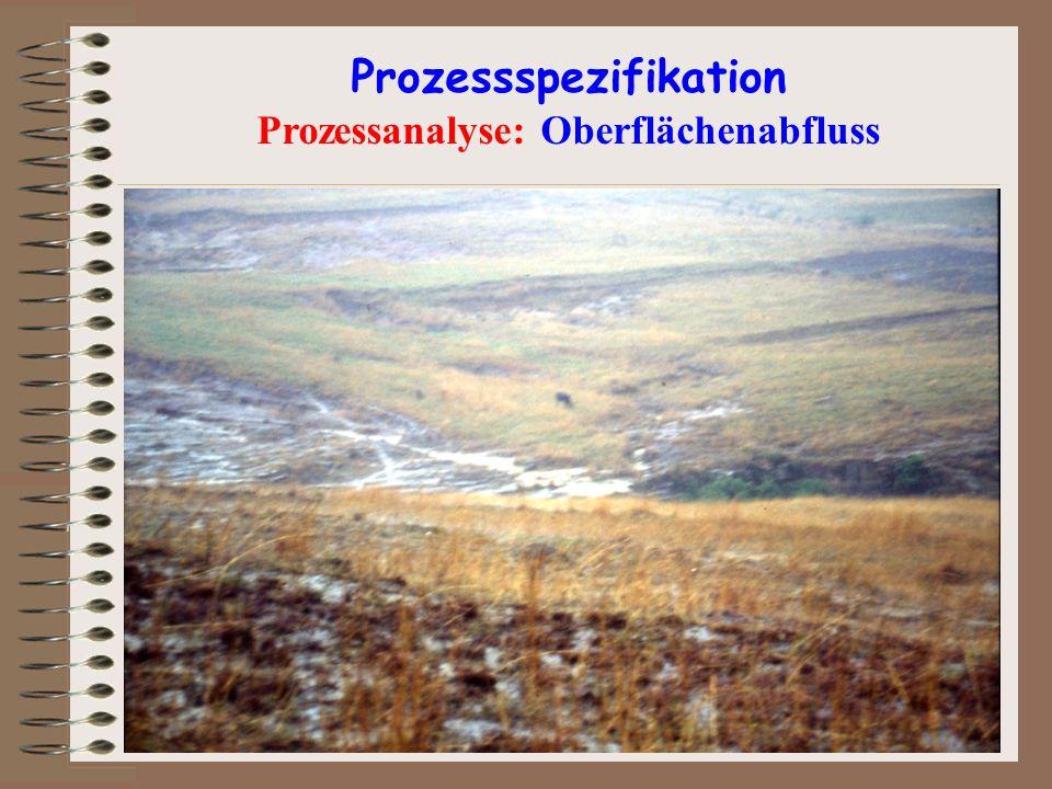 Prozessspezifikation Prozessanalyse: Oberflächenabfluss