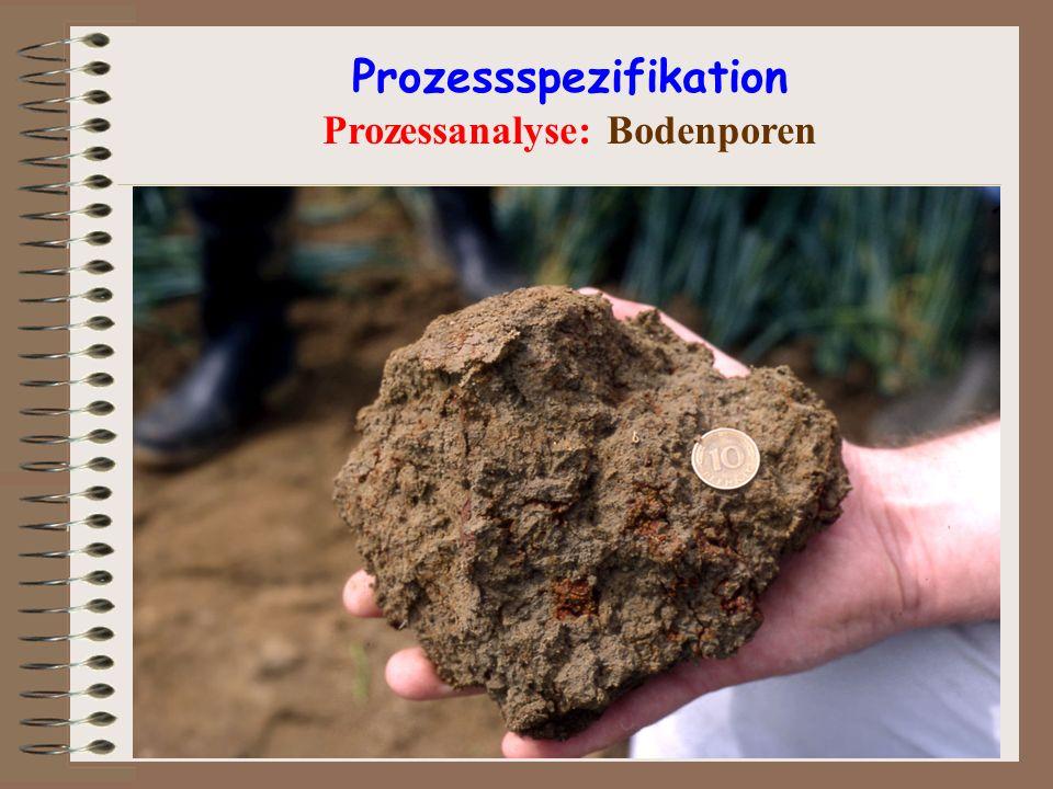Prozessspezifikation Prozessanalyse: Bodenporen