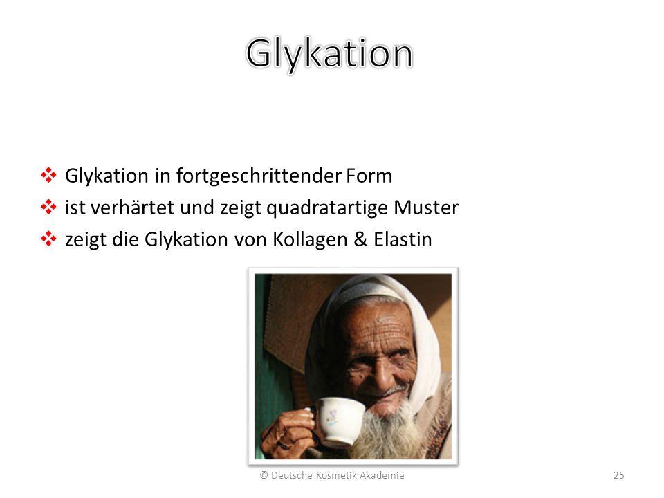 ❖ Glykation in fortgeschrittender Form ❖ ist verhärtet und zeigt quadratartige Muster ❖ zeigt die Glykation von Kollagen & Elastin © Deutsche Kosmetik