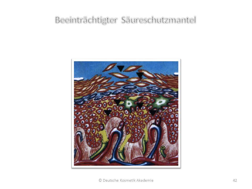 © Deutsche Kosmetik Akademie42