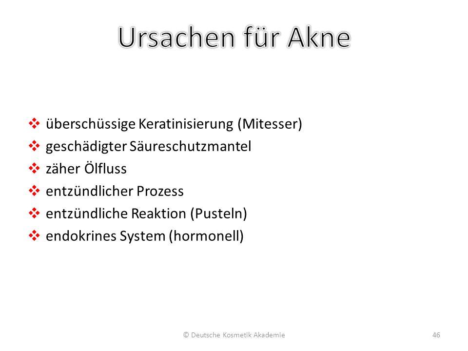 ❖ überschüssige Keratinisierung (Mitesser) ❖ geschädigter Säureschutzmantel ❖ zäher Ölfluss ❖ entzündlicher Prozess ❖ entzündliche Reaktion (Pusteln)