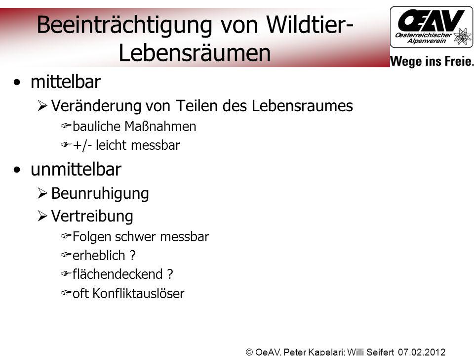 © OeAV, Peter Kapelari; Willi Seifert 07.02.2012 Beeinträchtigung von Wildtier- Lebensräumen mittelbar  Veränderung von Teilen des Lebensraumes  bau