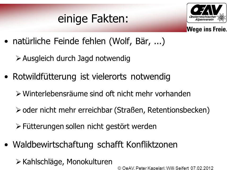 © OeAV, Peter Kapelari; Willi Seifert 07.02.2012 einige Fakten: natürliche Feinde fehlen (Wolf, Bär,...)  Ausgleich durch Jagd notwendig Rotwildfütte
