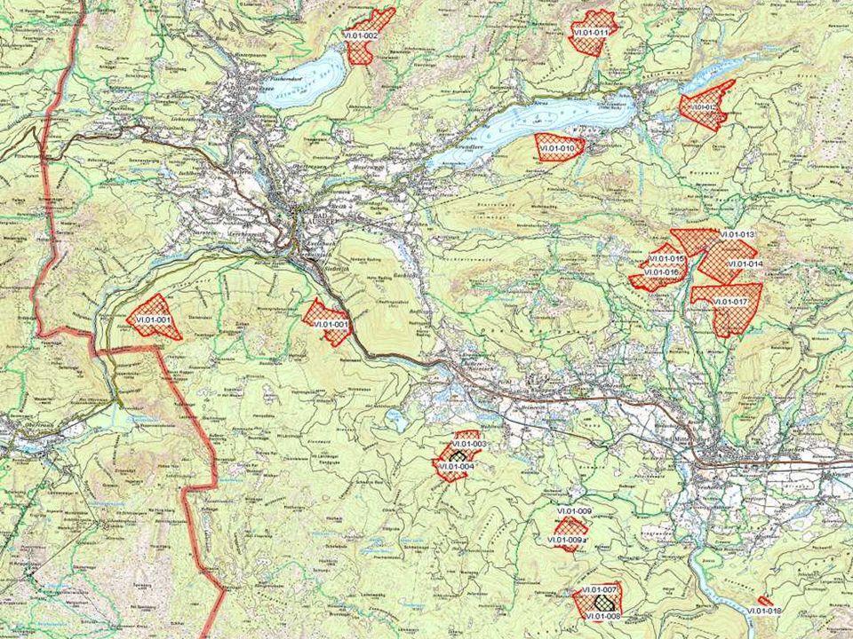 Steirisches Sektionentreffen, Trofaiach, 27.02.2010