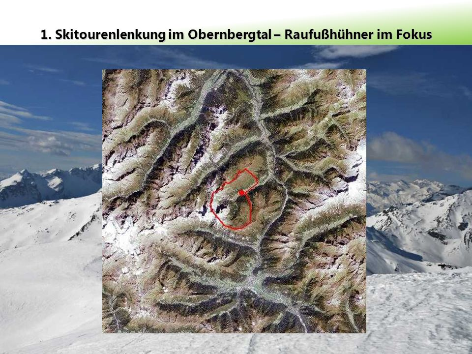 1. Skitourenlenkung im Obernbergtal – Raufußhühner im Fokus