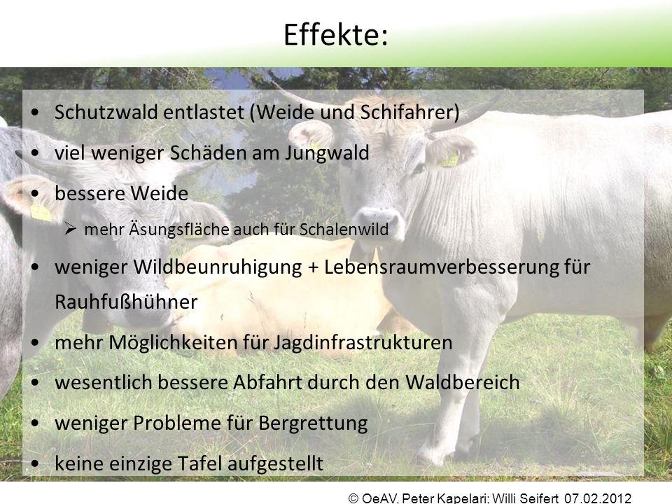 Effekte: Schutzwald entlastet (Weide und Schifahrer) viel weniger Schäden am Jungwald bessere Weide  mehr Äsungsfläche auch für Schalenwild weniger W