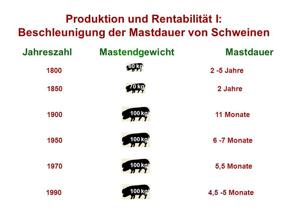 Jahreszahl Mastendgewicht Mastdauer 2 -5 Jahre 60 kg 1800 18502 Jahre 190011 Monate 19506 -7 Monate 19705,5 Monate 19904,5 -5 Monate 70 kg 100 kg Produktion und Rentabilität I: Beschleunigung der Mastdauer von Schweinen
