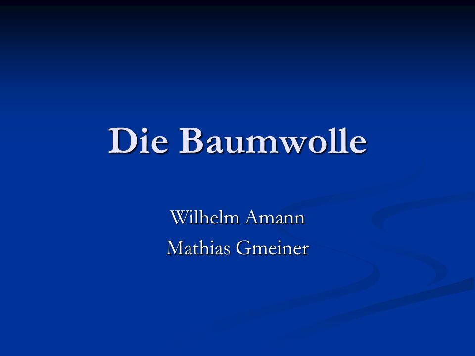 Die Baumwolle Wilhelm Amann Mathias Gmeiner