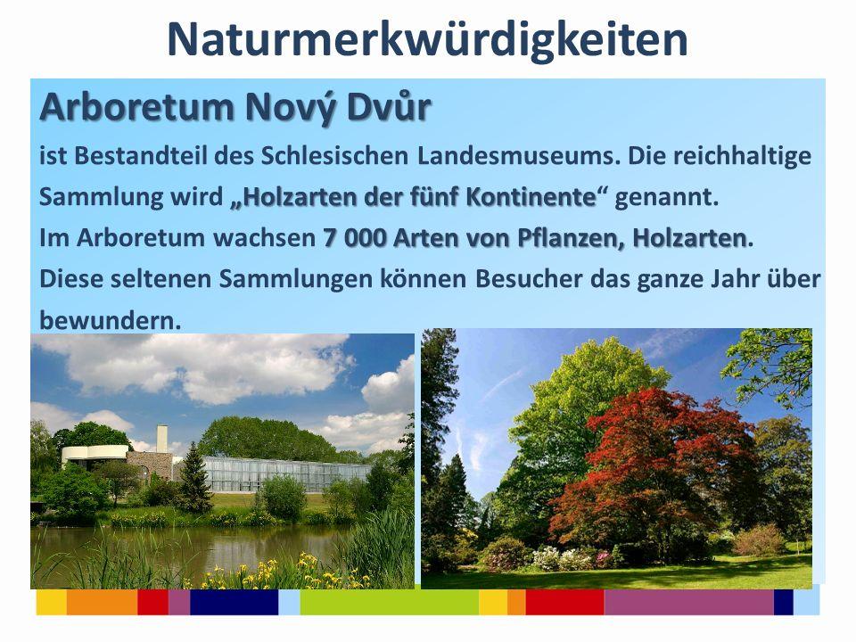 Naturmerkwürdigkeiten Arboretum Nový Dvůr ist Bestandteil des Schlesischen Landesmuseums.