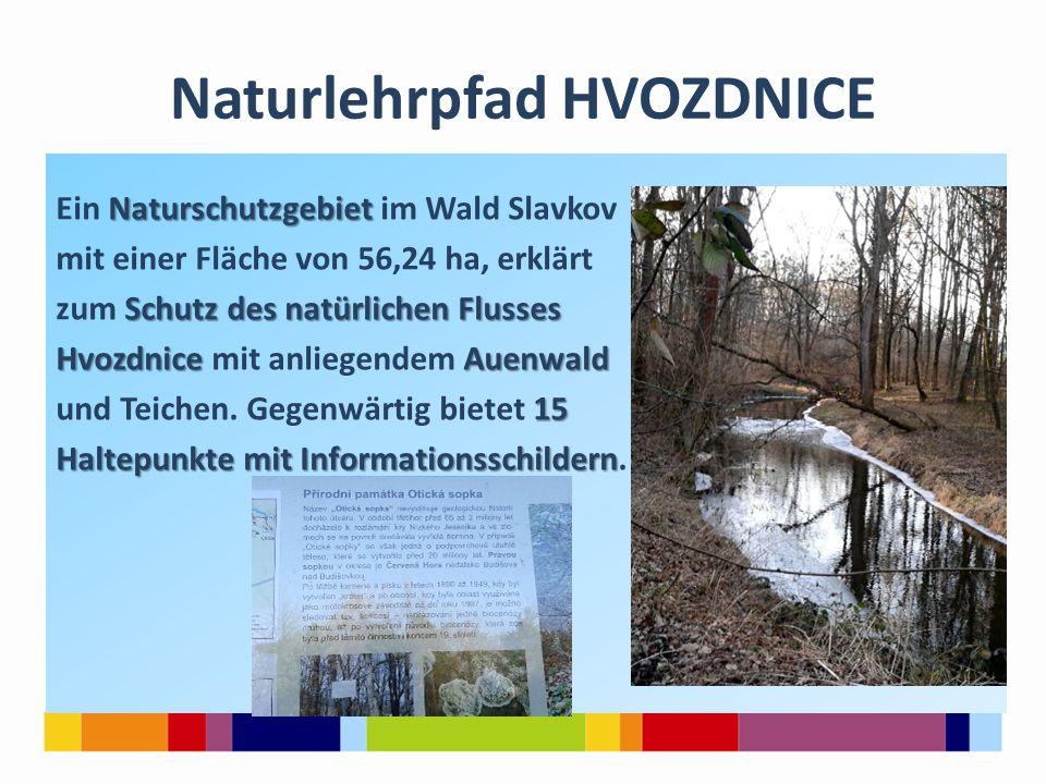 Naturlehrpfad HVOZDNICE Naturschutzgebiet Ein Naturschutzgebiet im Wald Slavkov mit einer Fläche von 56,24 ha, erklärt Schutz des natürlichen Flusses zum Schutz des natürlichen Flusses Hvozdnice Auenwald Hvozdnice mit anliegendem Auenwald 15 und Teichen.
