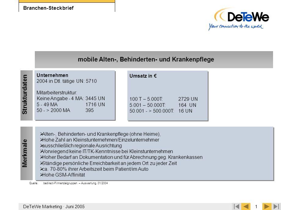 DeTeWe Marketing · Juni 20051 Branchen-Steckbrief  Alten-, Behinderten- und Krankenpflege (ohne Heime),  Hohe Zahl an Kleinstunternehmen/Einzelunter