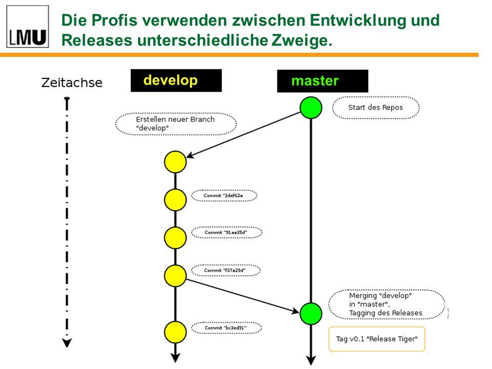 Die Profis verwenden zwischen Entwicklung und Releases unterschiedliche Zweige.