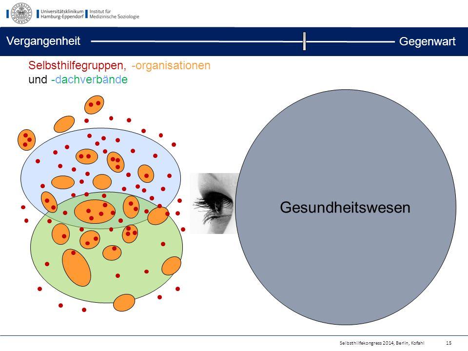 Selbsthilfekongress 2014, Berlin, Kofahl Gesundheitswesen 15 Selbsthilfegruppen, -organisationen und -dachverbände Vergangenheit Gegenwart