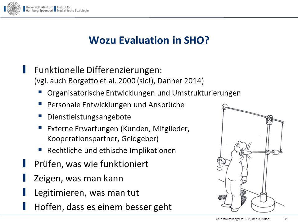 Wozu Evaluation in SHO? Funktionelle Differenzierungen: (vgl. auch Borgetto et al. 2000 (sic!), Danner 2014)  Organisatorische Entwicklungen und Umst