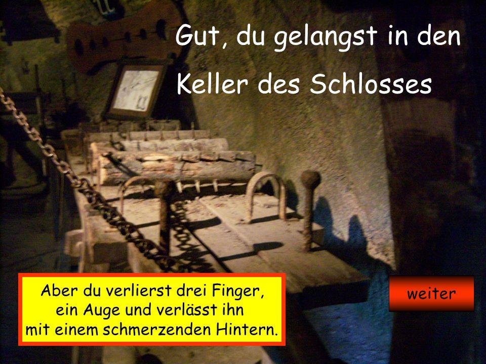 Gut, du gelangst in den Keller des Schlosses Aber du verlierst drei Finger, ein Auge und verlässt ihn mit einem schmerzenden Hintern.