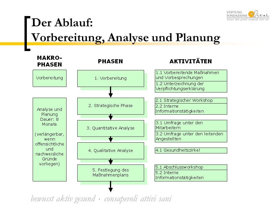 bewusst aktiv gesund  consapevoli attivi sani Der Ablauf: Vorbereitung, Analyse und Planung