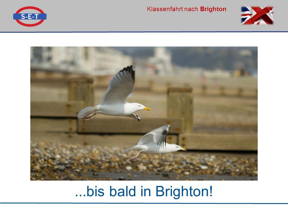 Klassenfahrt nach Brighton...bis bald in Brighton!