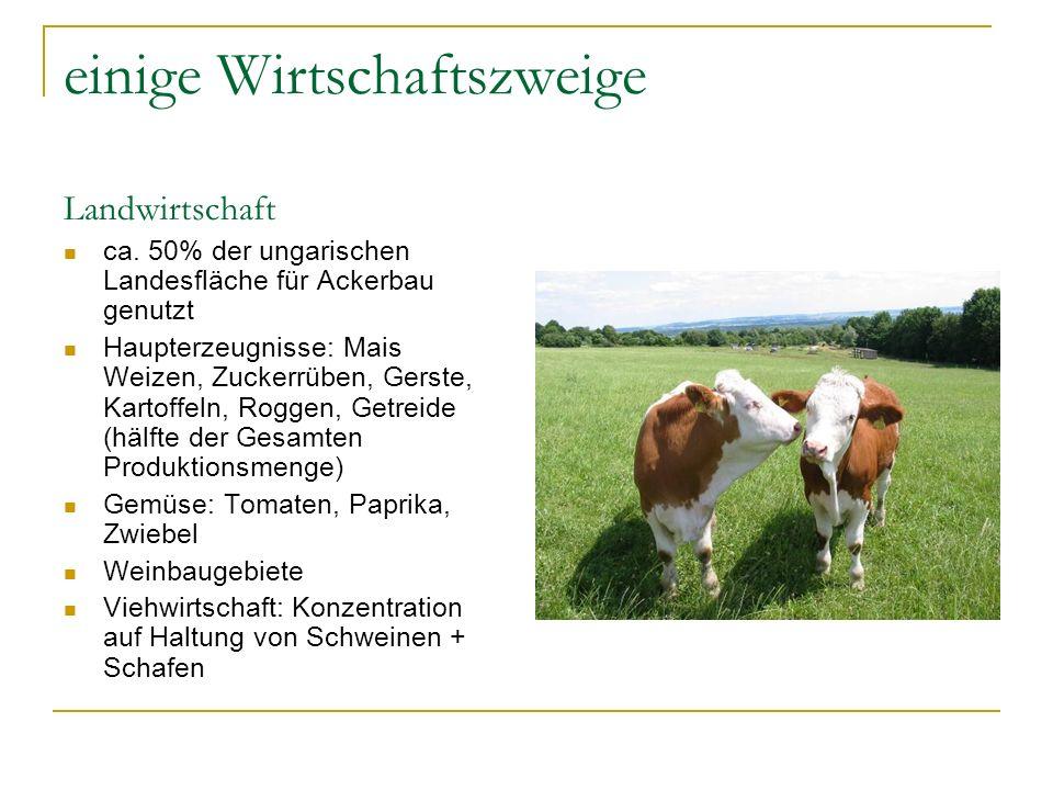 einige Wirtschaftszweige Landwirtschaft ca. 50% der ungarischen Landesfläche für Ackerbau genutzt Haupterzeugnisse: Mais Weizen, Zuckerrüben, Gerste,