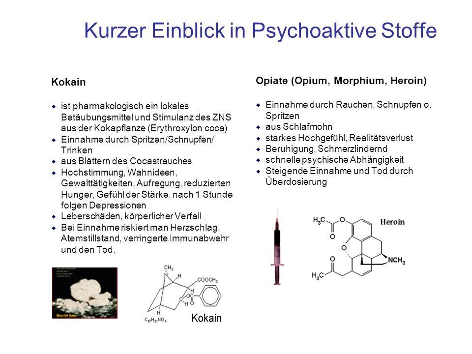 Kurzer Einblick in Psychoaktive Stoffe Kokain  ist pharmakologisch ein lokales Betäubungsmittel und Stimulanz des ZNS aus der Kokapflanze (Erythroxyl