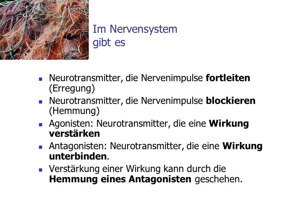 Im Nervensystem gibt es Neurotransmitter, die Nervenimpulse fortleiten (Erregung) Neurotransmitter, die Nervenimpulse blockieren (Hemmung) Agonisten:
