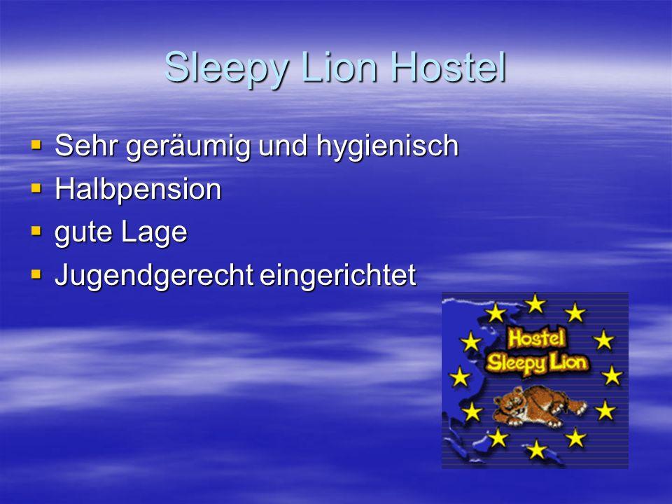 Sleepy Lion Hostel  Sehr geräumig und hygienisch  Halbpension  gute Lage  Jugendgerecht eingerichtet
