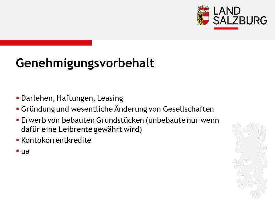 Genehmigungsvorbehalt  Darlehen, Haftungen, Leasing  Gründung und wesentliche Änderung von Gesellschaften  Erwerb von bebauten Grundstücken (unbeba