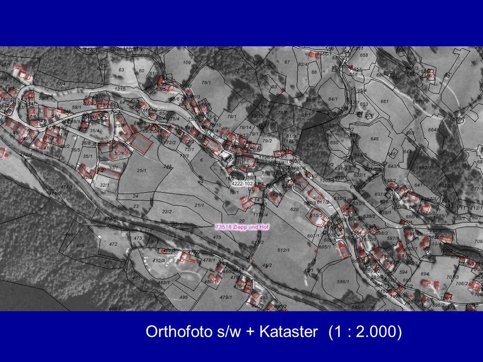 Orthofoto s/w + Kataster (1 : 2.000)