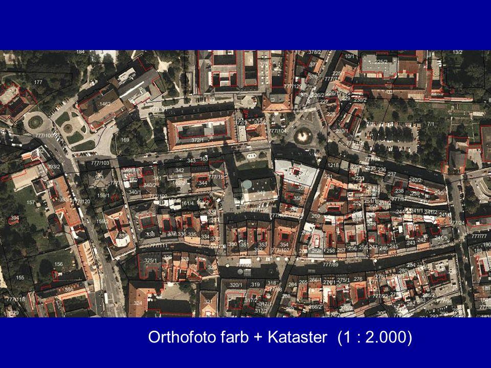 Orthofoto farb + Kataster (1 : 2.000)