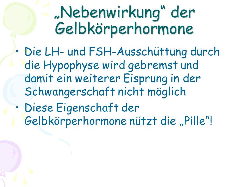 """""""Nebenwirkung der Gelbkörperhormone Die LH- und FSH-Ausschüttung durch die Hypophyse wird gebremst und damit ein weiterer Eisprung in der Schwangerschaft nicht möglich Diese Eigenschaft der Gelbkörperhormone nützt die """"Pille !"""