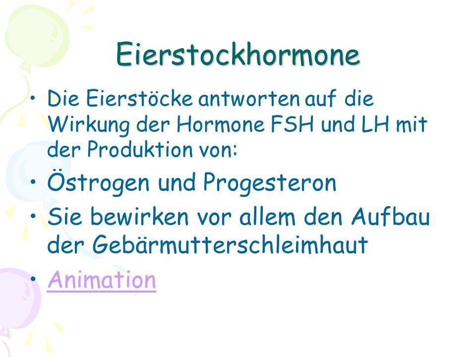 Eierstockhormone Die Eierstöcke antworten auf die Wirkung der Hormone FSH und LH mit der Produktion von: Östrogen und Progesteron Sie bewirken vor allem den Aufbau der Gebärmutterschleimhaut Animation