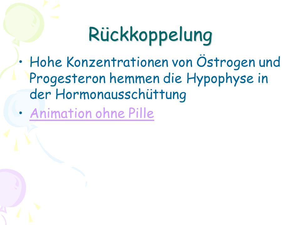 Rückkoppelung Hohe Konzentrationen von Östrogen und Progesteron hemmen die Hypophyse in der Hormonausschüttung Animation ohne Pille