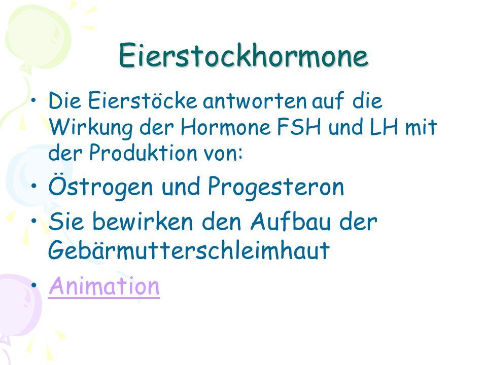 Eierstockhormone Die Eierstöcke antworten auf die Wirkung der Hormone FSH und LH mit der Produktion von: Östrogen und Progesteron Sie bewirken den Auf