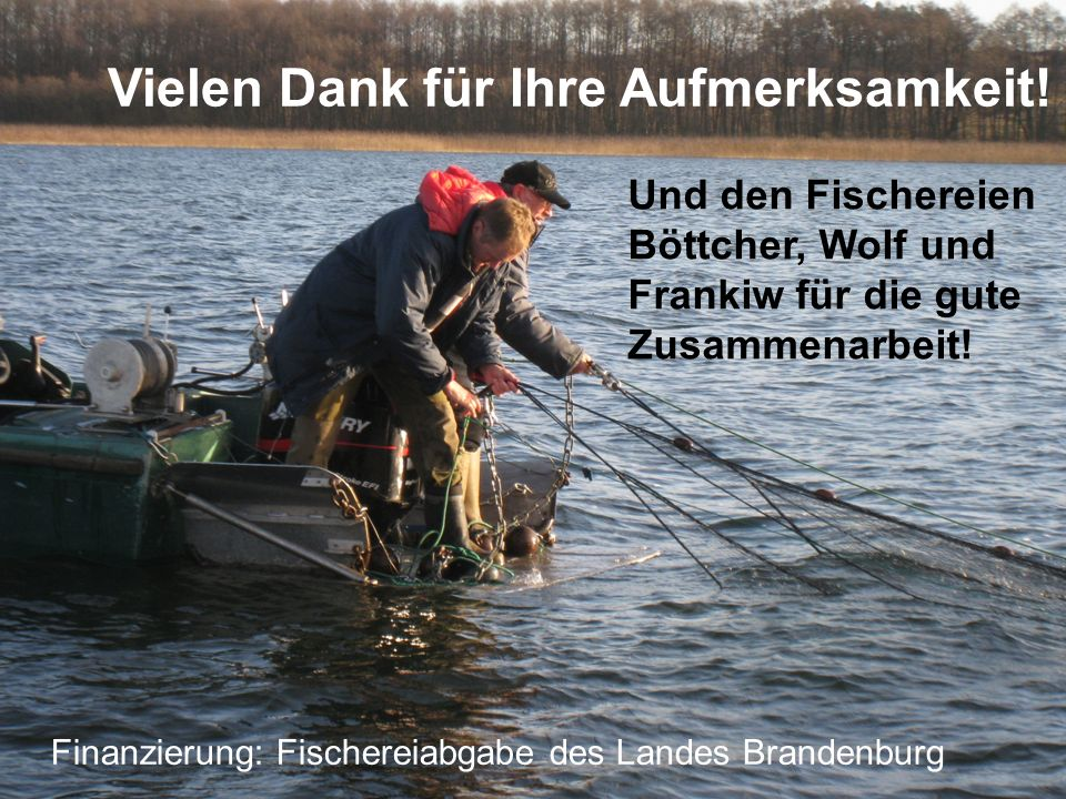 Vielen Dank für Ihre Aufmerksamkeit! Und den Fischereien Böttcher, Wolf und Frankiw für die gute Zusammenarbeit! Finanzierung: Fischereiabgabe des Lan